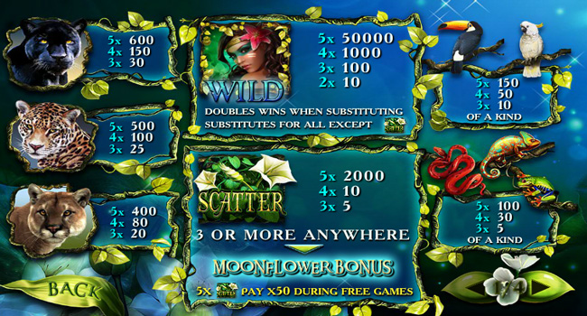 Review of the Secrets of the Amazon Pokies & Free Play
