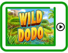 free wild dodo ipad, iphone, android slots pokies
