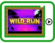 free wild run ipad, iphone, android slots pokies