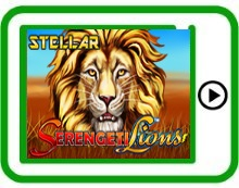 Serengeti Lions free mobile pokies