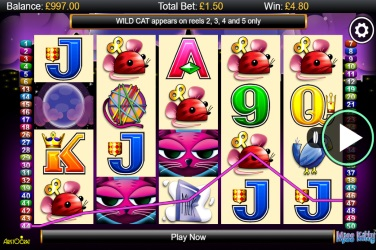 Review the Miss Kitty Slots Here with No Download