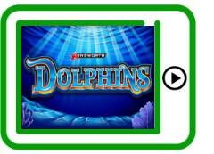 Dolphins free pokies