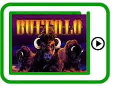 Buffalo free pokies